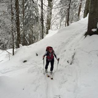 Aufstig durch den Wald von Wiesing