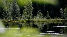 Baiersbronner Himmelsweg: 2-Seen-Tour