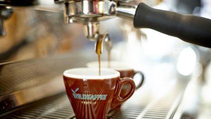 Wildkaffee