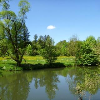 Der Neckar bei Tierstein
