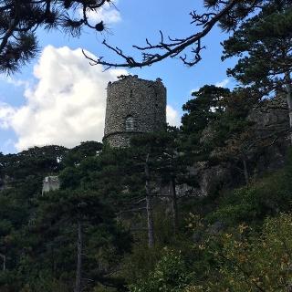 Schwarzer Turm (22.8.2014)