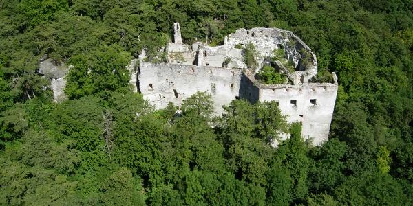 Ruine Merkenstein