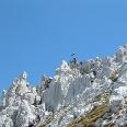Gipfelkreuz Hinterer Goinger Halt