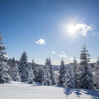 Loipenparadies Hochschwarzwald