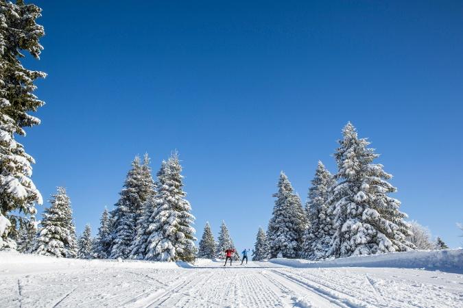 Adlerwald-Loipe