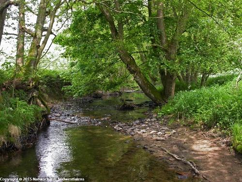 Orketal - Naturerlebnisweg bei Medebach-Medelon
