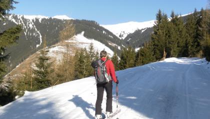 Hochkogel links über dem Lengbachtal