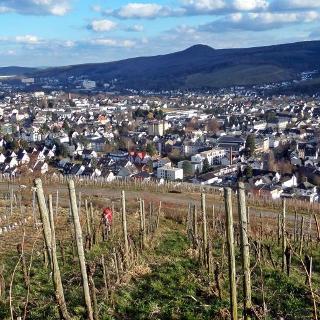 Blick vom Rotweinwanderweg nach Bad Neuenahr- Ahrweiler
