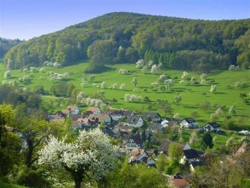 ''Lipburger Rundweg'' gelbe Route