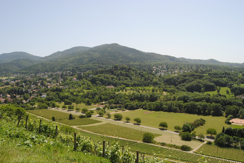 Blick auf den Blauen vom Römerberg