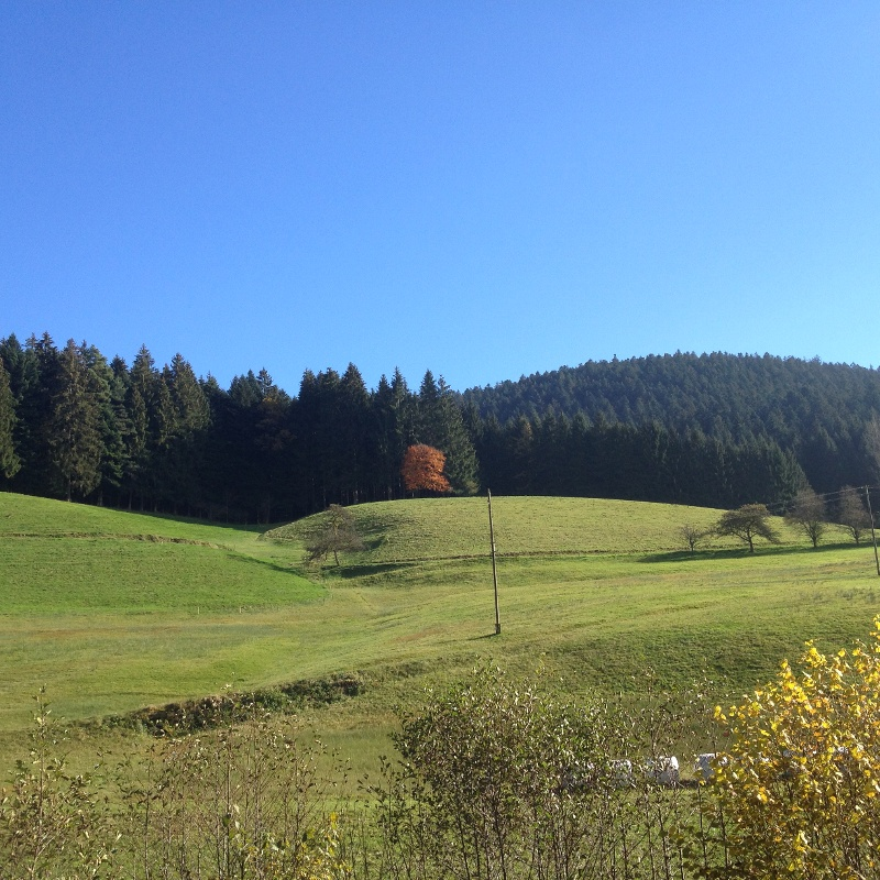 Beste Spielothek in Alpirsbach finden