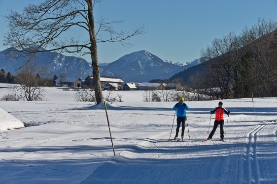 Cross-country ski trail – shorter Rochus route