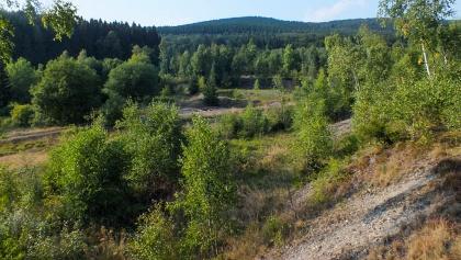 Halden im Grubengelände Littfeld