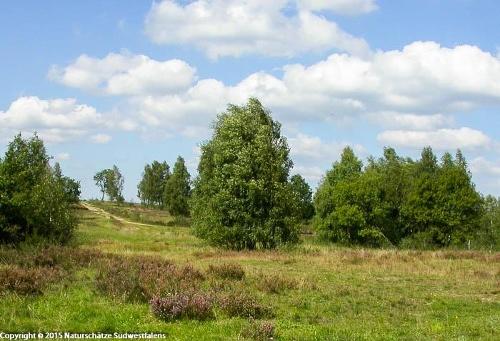 Trupbacher Heide - Naturerlebnisweg südwestlich von Siegen-Geisweid