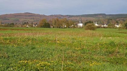 Das Wetterbachtal bei Holzhausen