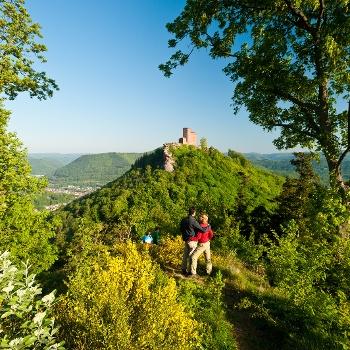 Wandern Rheinland-Pfalz