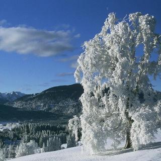 Winterwanderung -Achele Runde
