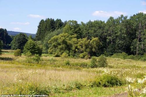 Großmicketal - Naturerlebnisweg bei Wenden