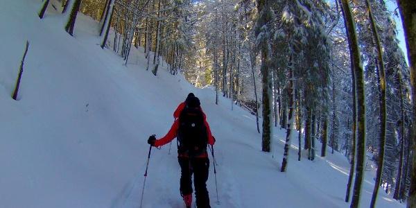 Skitourengeher sind ebenso häufig anzutreffen, wie Schneeschuhwanderer.