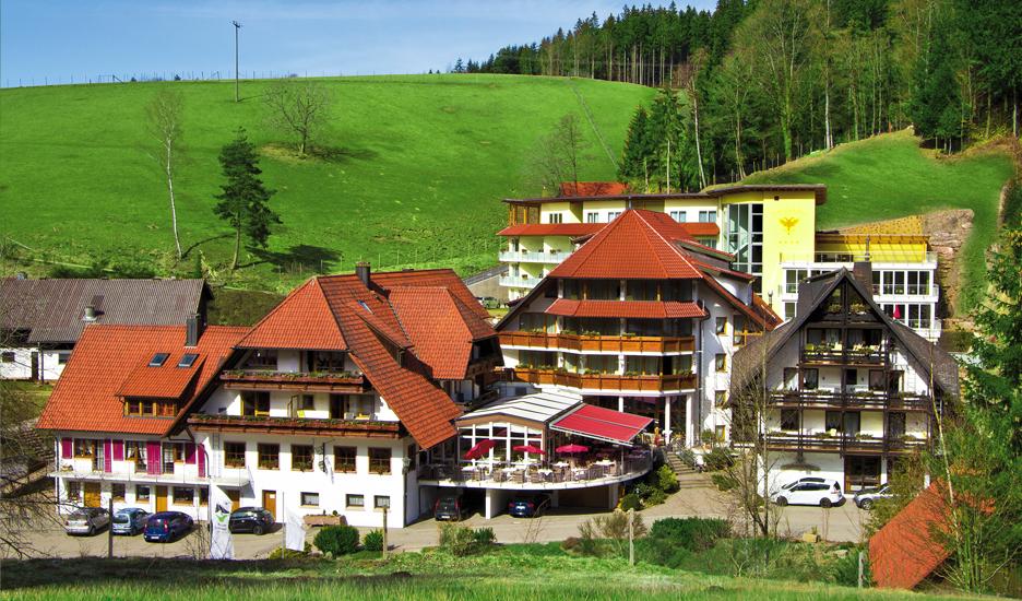 Naturpark-Hotel Adler in St. Roman