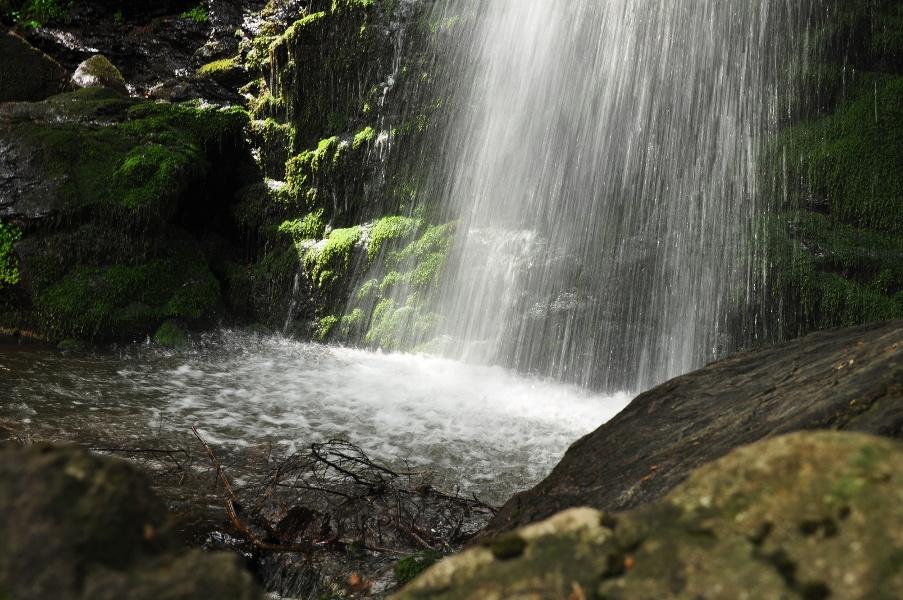 Durch den mystischen Bannwald zum Zweribach-Wasserfall