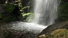 Durch mystischen Bannwald zum Zweribach-Wasserfall
