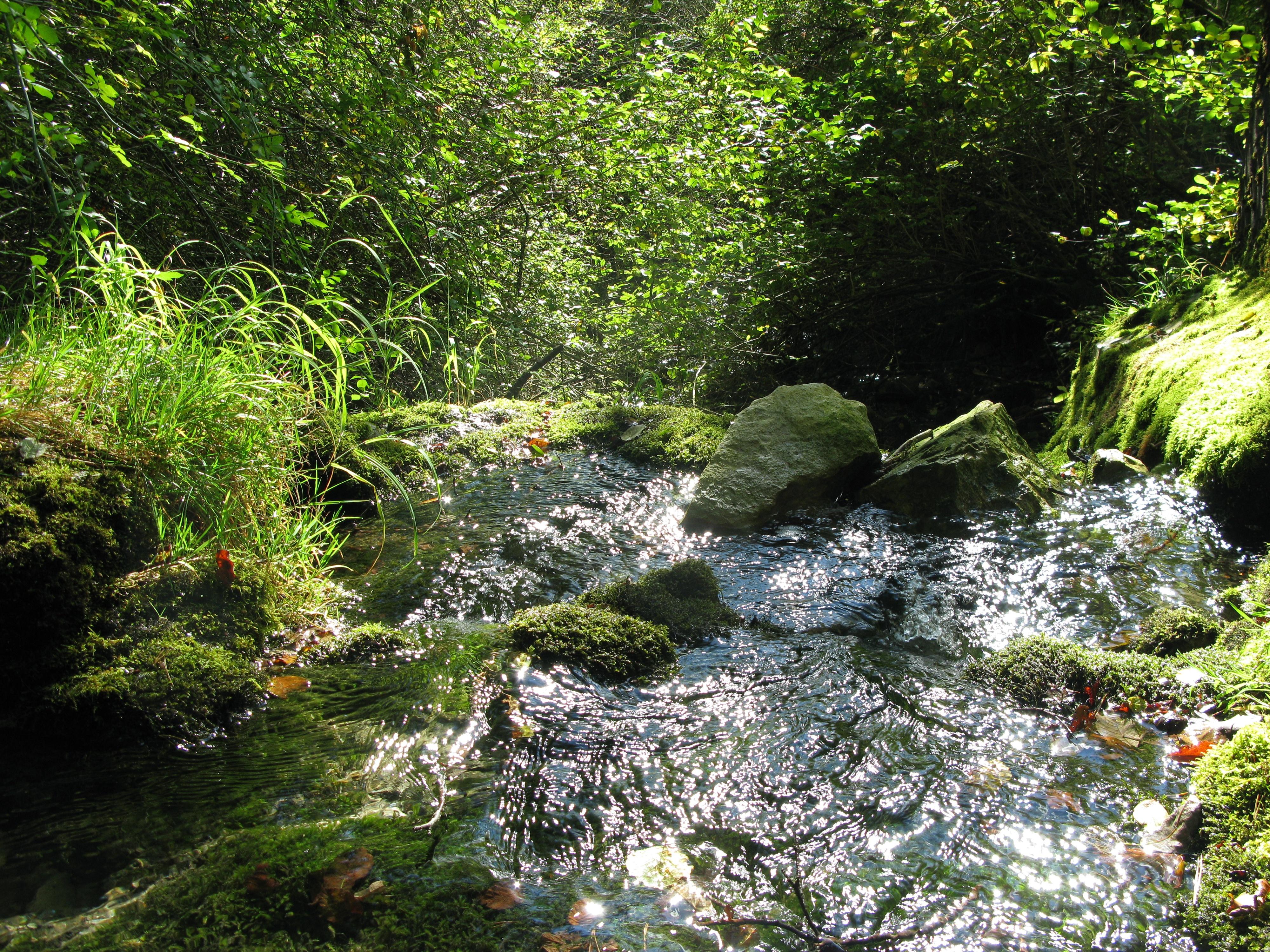 Lochbrunnenquelle