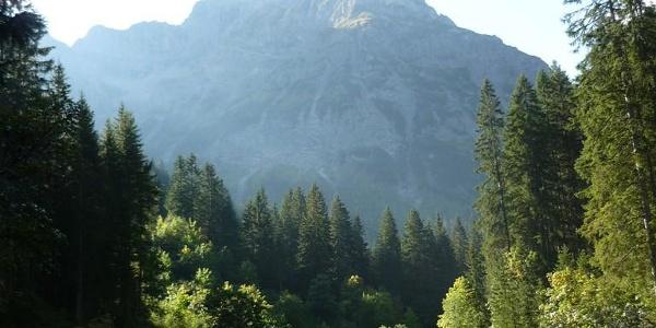 Schon zu beginn kurz nach der Brücke über die Breitach hat man den großen Widderstein im Blick