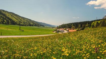 Landschaft bei La-Chaux-de-Fonds