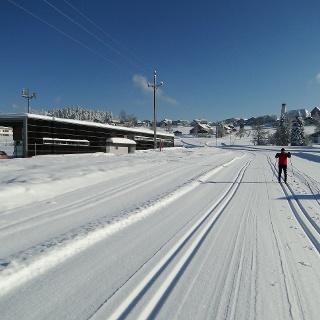 Loipe im Nordic Sport Park in Sulzberg