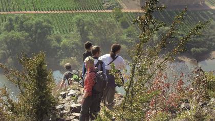 Klettersteig Calmont : Calmont klettersteig u klettern outdooractive