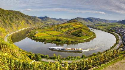 Calmont - der steilste Weinberg Europas (© Heinz Peierl)