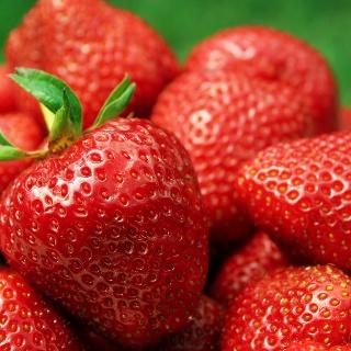 Frische Erdbeeren aus dem Spreewald