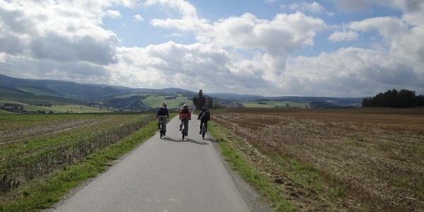 Am Emmlerweg bei Markersbach