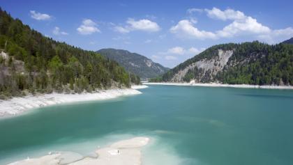 Am Ufer des Sylvensteinsees