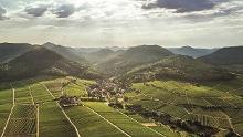 Leinsweiler Nordic-Walking schwierige Tour