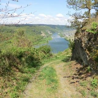 Hoch über der Mosel zwischen Starkenburg und Enkirch