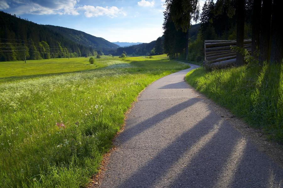 Höhenklimaweg Lenzkirch Stöcklebergrunde