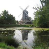 Borgerdings Mühle, Spreda
