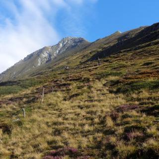 Blick vom Thiemehüttl zum Gipfel.