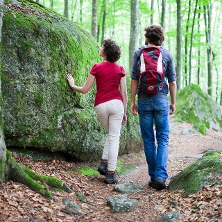Zwischen Felsen und Wäldern