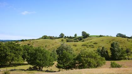 Hügellandschaft in Südschweden