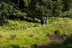 Wanderung am Haselbach entlang