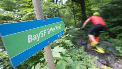 Mtb Trail in Kreuth