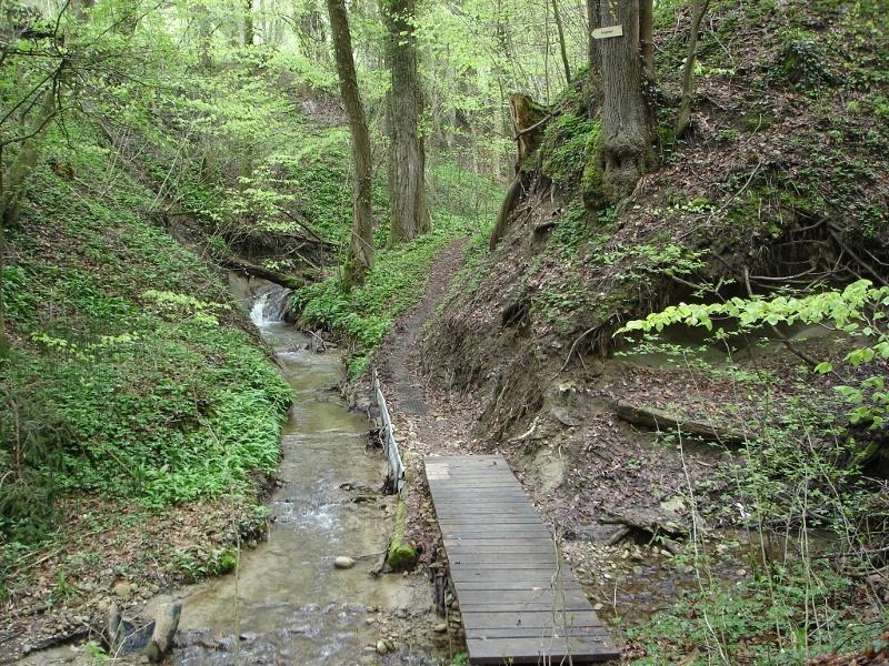 Durch die romantische Klingenbachschlucht und auf dem Panoramaweg von Öhningen nach Wangen