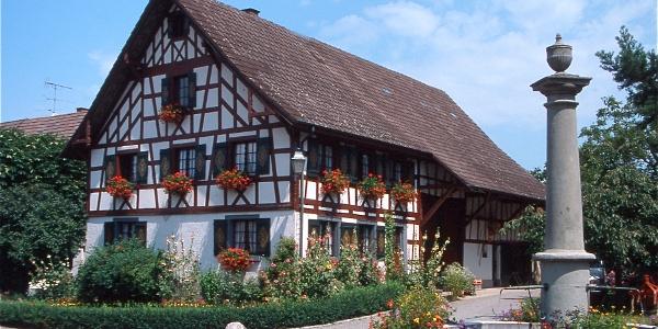 Dorfbrunnen mit Dummlerhaus