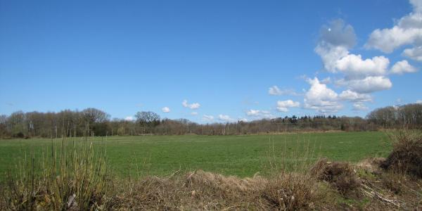 1. Pause nach 2 Stunden - nordöstlich von Bargstall (bei 9,2km)