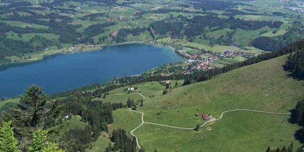 Panorama auf den Alpsee