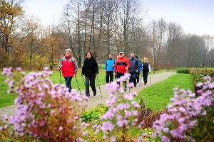 Nordic Walking durch Burg
