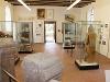 Römermuseum Mainhardt   - © Quelle: Hardy Mann